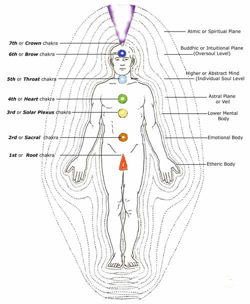 The Energetic Composition of the Body | Quantum Institute International